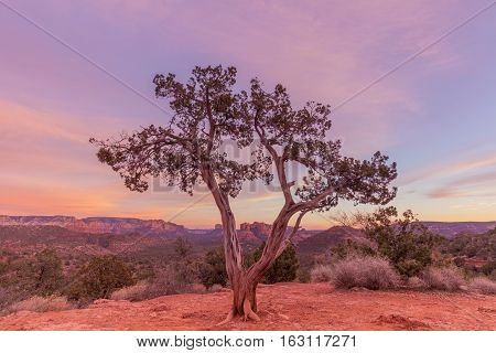 sunset in the red rock country of Sedona Arizona