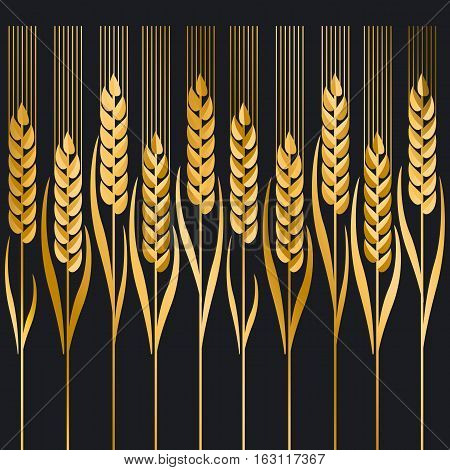 gold wheat vector illustration ion black background