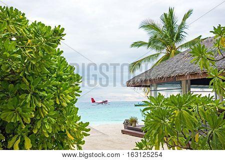 seaplane near the coast of the Maldivian island with violent tropical vegetation