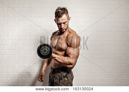 Studio portrait of concentrated topless bodybuilder performing biceps exercise with dumbbells over white background. Cutout.