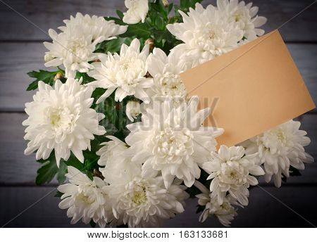 White Chrysanthemum in flower pot with gift, greeting card, on grey wooden backround, horizontal