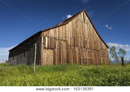 Old vintage barn on ranch with blue sky and green grass.