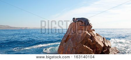 "California Sea Lion resting on ""the Point"" or ""Pinnacle of Lands End"" of Los Arcos in Cabo San Lucas in Mexico BCS"