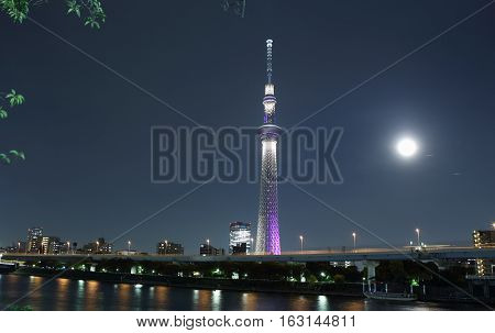Tower is the tallest free-standing in Japan night shot