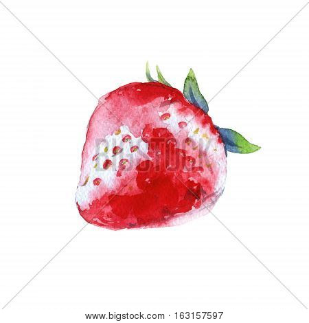 Strawberry. Forest berry. Isolated on a white background. Watercolor illustration.