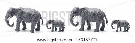 Row of Elephant Figurines on White Background