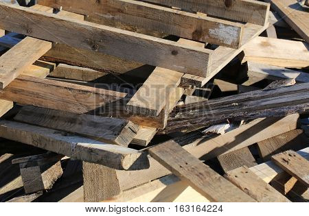 Wooden Pallets In A Woody Material Landfill