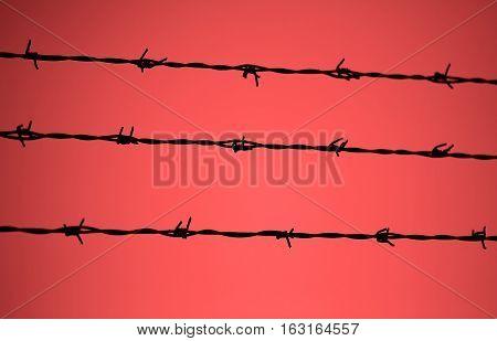 Barbed Wire And The Blurred Red Background