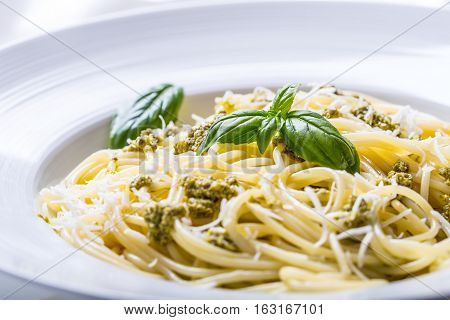 Spaghetti. Spaghetti with homemade pesto sauce olive oil and basil leaves.