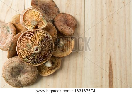 Mushrooms Stacked On A Background