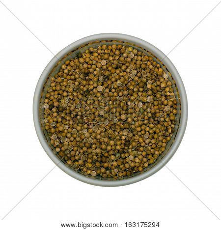 Coriander spice. Coriander, also known as cilantro or Chinese parsley, is an annual herb in the family Apiaceae.