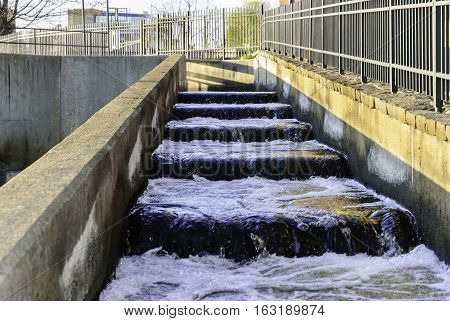 Fish ladder at the Moody Streeet Dam in Waltham Massachusetts