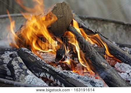 wood in an iron brazier burning in small part to ashes