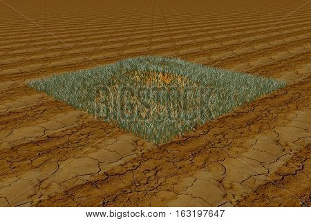 Grass Clod In The Desert