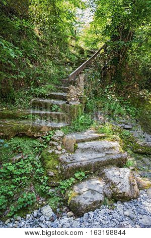 Ancient Stone Steps Into The Wild Jungles