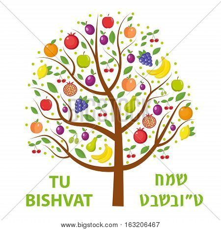 Tu Bishvat greeting card, poster. Jewish holiday, new year of trees. Tree with different fruits, fruit tree. Vector illustration