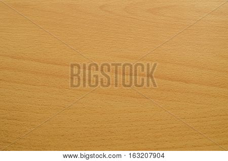 Background abstract texture beech yellow with longitudinal lines