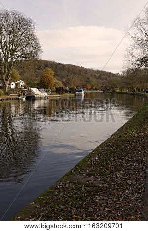 An image of the Autumn Leaves alongside the River at Henley-on-Thames Oxfordshire England UK