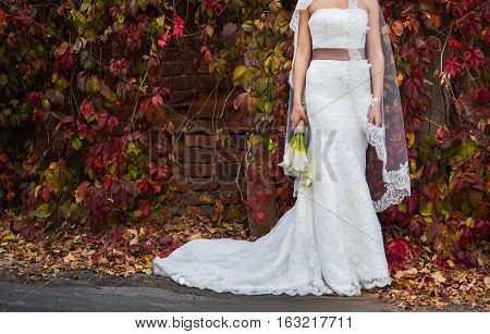 bride in a beautiful wedding dress on a background of red leaves a bouquet of calla