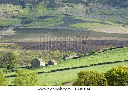The York Moors Farm.
