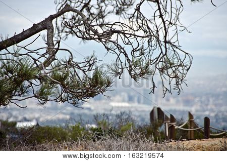 Looking At San Diego From Old Point Loma Lighthouse Viewpoint