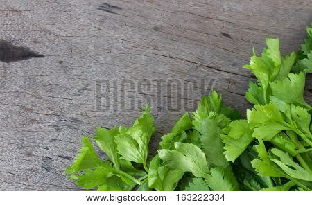 Closeup celery on wood background, Used for cooking