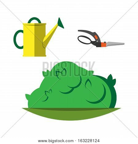 Yellow watering can isolated on white. Vector illustration steel metallic single horticulture garden secateurs equipment. Irrigation agriculture metal cultivate tool.
