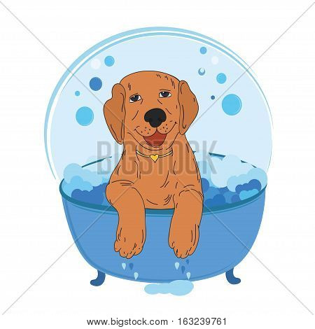 Dog bath vector illustration. Cute cartoon dog bathing  in a bubble bath. Pet wash vector.