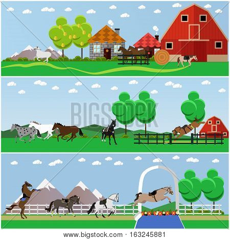Vector set of horse riding, taming horses and farming concept banners, posters, flat style.