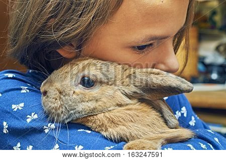 Schoolgirl holding a funny rabbit in her hands