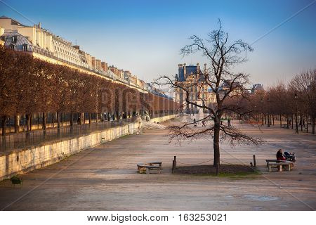 Autumn alley in the city, Paris, France