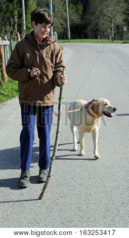 Boy Walks With His Dog On A Leash On The Way