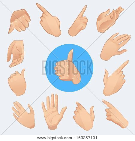 collection of woman hands in various gestures. isolated on white background.Vector illustration
