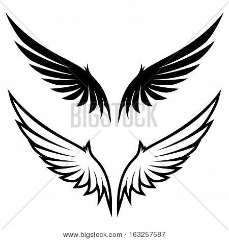 Set of wings on a white background.