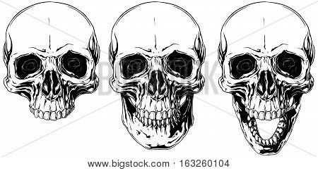 A vector illustration of White graphic human skull with black eyes set