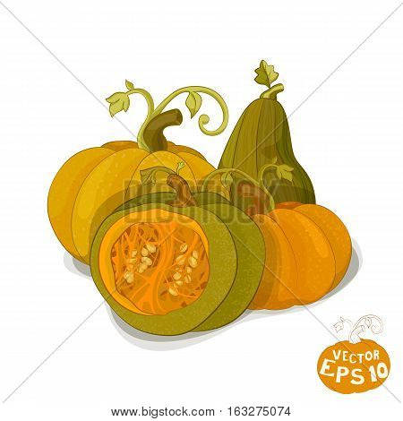 Ripe Pumpkins. Pumpkin Seeds And Pulp