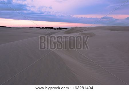 Sand Dune in Newcastle NSW Australia at sunset.