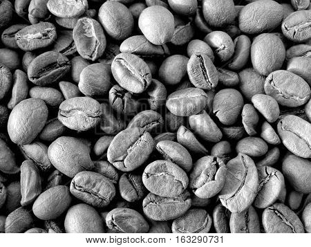 Harvest coffee beans drink wallpaper background arabica