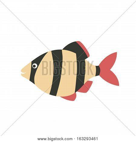 Barbus fish icon cartoon. Singe aquarium fish icon from the sea, ocean life collection.