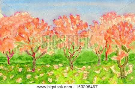 Autumn landscape, orange trees, hand painted picture watercolours