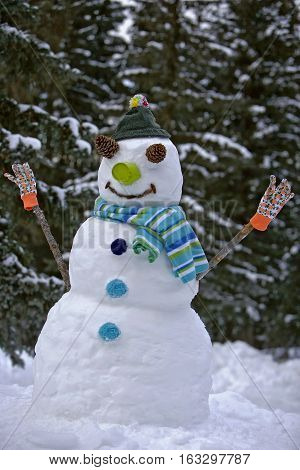 Smiling Snowman standing at edge of snow covered forest, wearing scarf.
