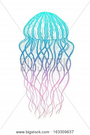Jellyfish in line art style. Hand drawn vector illustration. Design for coloring book. Ocean elements