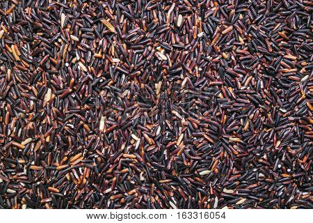 long black rice background, backdrop or texture
