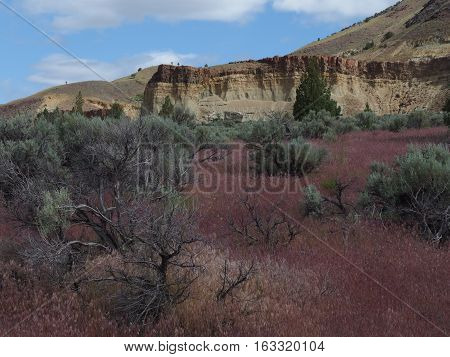 Wild grasses sagebrush layered mountains with lots of colors and a blue sky on a sunny spring day in the John Day Fossil Beds in Eastern Oregon.
