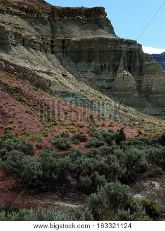 The textured layered and colored cliffs of the John Day Fossil Beds in Eastern Oregon with bright wild grasses and sagebrush on a spring day.