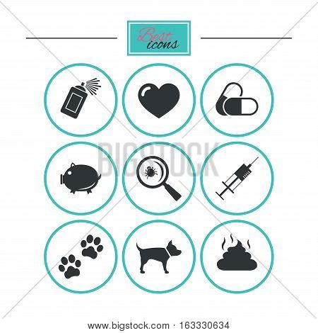 Veterinary, pets icons. Dog paws, syringe and magnifier signs. Pills, heart and feces symbols. Round flat buttons with icons. Vector