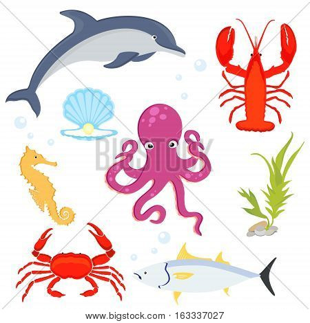Sea fishes and animals collection. Sea creatures dolphin lobster crab sea horse tuna sea shell and octopus.