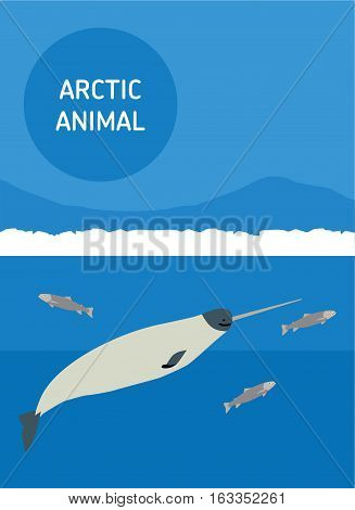 Sea unicorn floating in the sea. Vector drawing of a series of Arctic animals. Flat style illustration