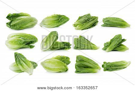 Closeup Cos Lettuce on White Background. food