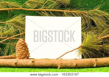 Template card on background of branches of cedar pine cones and grass. For your advertising eco store